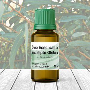 oléo essencial de eucaliptus globulus